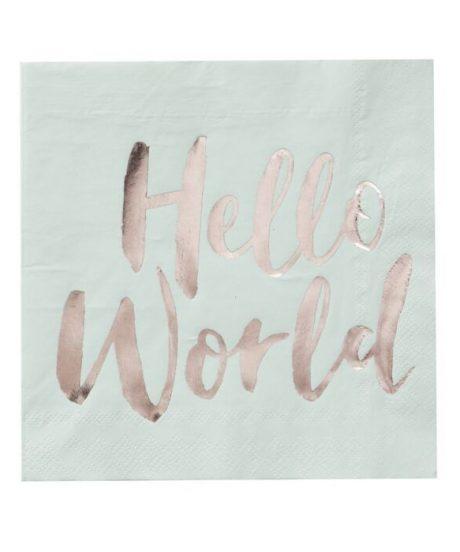 Ginger Ray® Serviete - Hello World - 20 kosov