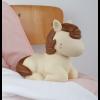 nlhobr28-lr-9_night_light_horse.1560296276 (1)